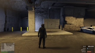Download Grand Theft Auto 5 Online with ArcticWolf8319 Video