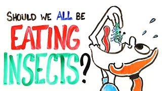 Download Should We All Be Eating Insects? Video