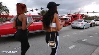 Download WhipAddict: Orlando Classic 2017: Sunday In The Street Part 2: Night Action, Ladies Out Video