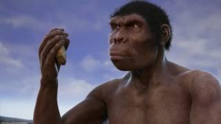 Download Эволюция от обезьяны к человеку Video
