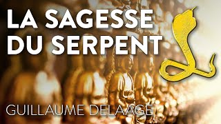 Download LA SAGESSE DU SERPENT Video