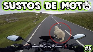 Download SUSTOS DE MOTO (EP. 05) Video