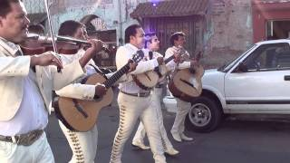 Download La Guadalupana Mariachi Continental de la Laguna Video