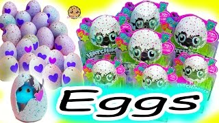 Download Hatchimals CollEGGtibles Hatching Surprise Blind Bag Baby Animal Eggs with My Little Pony Video