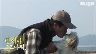 Download 냉동고에서 얼어 죽을 뻔한 주인 목숨 구한 민이 Video