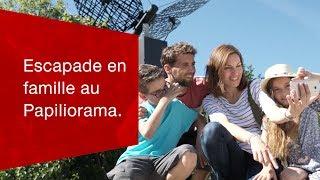 Download Escapade en famille au Papiliorama. Video