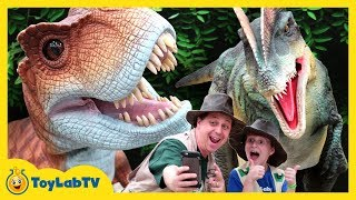 Download Giant Life Size T-Rex & Little Dinosaurs at Jurassic Quest Kids Dinosaur Event Video