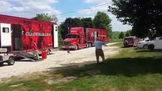 Download Budweiser Clydesdales Video