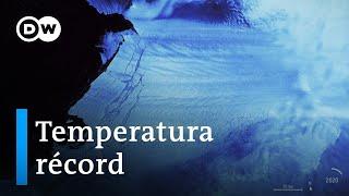 Download 20 grados centígrados en la Antártida Video