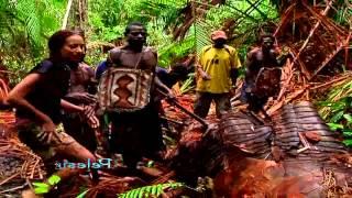 Download Berburu Ulat Sagu - Pelesir (25/5) Video