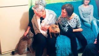 Download РЕАКЦИЯ родных Кати на РЫСЬ. Ханна получает леща Video
