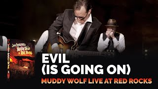 Download Joe Bonamassa - Evil (Is Going On) - Muddy Wolf at Red Rocks Video