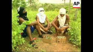 Download RR0243/A Brazil: Animal Trafficking Video
