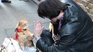 Download Bob The Street Cat Revisits Covent Garden Video