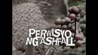 Download SONA: Malawak na taniman ng kape sa Amadeo, natabunan ng abo Video