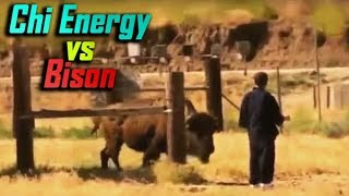 Download Chi Energy Master Knocks Out a Bison? - No Touch Martial Arts Reality - Part 5 Video