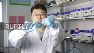 Download China: This tech can allow printed paper to be re-used again and again Video