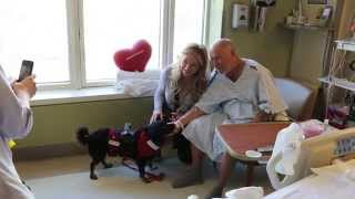 Download A Day in the Life of Therapy Dog Partners Daisy and Wendy Video