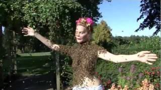 Download Bee Dancer : Bee Queen Video