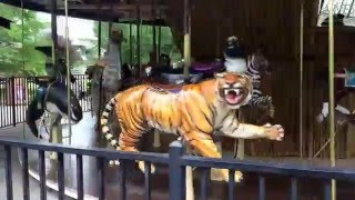 Download Zoo Carousel Ride Video