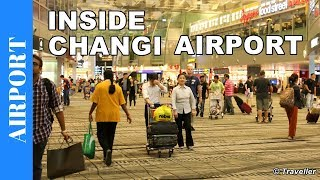 Download Inside Singapore Changi Airport - World´s Best Airport - Our Favorite Airport Video