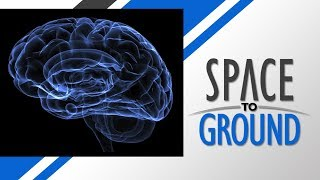 Download Space to Ground: Neuromapping: 03/16/2018 Video