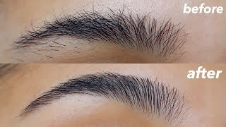 Download HOW TO GROOM + SHAPE YOUR EYEBROWS! (super easy) Video