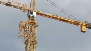 Download process of jumping a Liebherr 630 Ech 40 tower crane Video