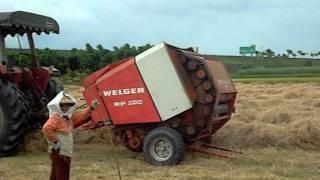 Download 牧草採收 Video