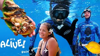Download Brad Goes Spearfishing in Hawaii | It's Alive: Goin' Places | Bon Appétit Video