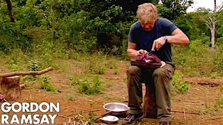 Download Gordon Ramsay Cooks Buffalo For A Cambodian Tribe | Gordon's Great Escape Video