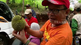 Download THOUSAND MILES - SURGA TERSEMBUNYI HUTAN BORNEO (23/5/17) 3-2 Video