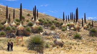 Download Huascaran National Park, Peru in 4K Ultra HD Video