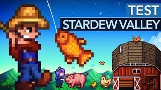 Download Stardew Valley - Test / Review zum Bauernhof-Hit auf Steam (Gameplay) Video