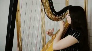 Download Muse - Plug In Baby // Amy Turk, harp Video