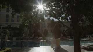 Download Bellagio Las Vegas Video
