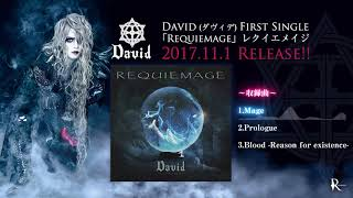 Download David (SUI) - Requiemage Single Preview Video