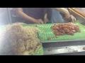 Download Món xôi nhà xác độc nhất ở Sài Gòn Video