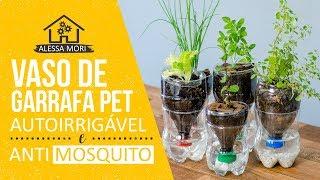 Download ⭐VASO AUTOIRRIGÁVEL ANTIDENGUE (ANTI-AEDES) COM GARRAFA PET - DIY Video
