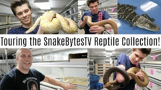 Download Touring the SnakeBytesTV Reptile Collection! w/ Brian Barczyk Video