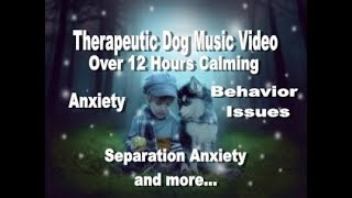 Download Over 12 Hours Calming Music Video For Your Beautiful Dog(s) (tested) Video