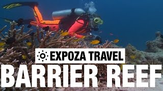 Download The Great Barrier Reef (Australia) Vacation Travel Wild Video Guide Video