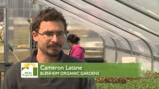 Download Organic, Natural and Conventional Farming Video