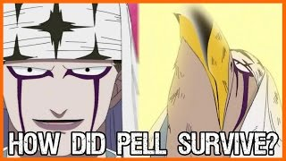 Download How Did Pell Survive The Explosion? One Piece Theory Video