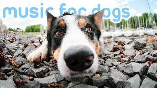 Download 11 HOURS Deep Relaxation Dog Music! Reduce Anxiety and Stress in Dogs! Video