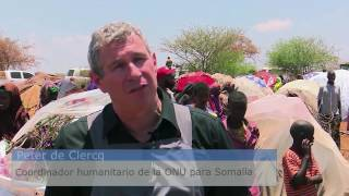 Download La sequía en Somalia sigue desplazando a miles de personas Video
