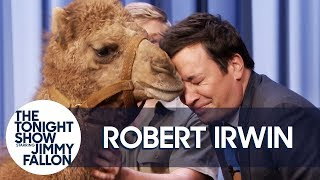 Download Robert Irwin's Baby Camel Kisses Jimmy on the Lips Video