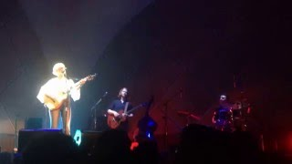 Download Laura Marling - Wildfire (new song) - Live at Cine Joia, São Paulo Video
