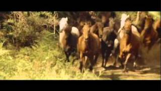 Download 02 The Man From Snowy River Jim's Ride Video