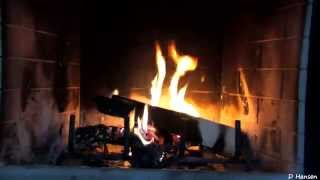 Download 1 Hour Burning Logs in Fireplace (in HD) Video